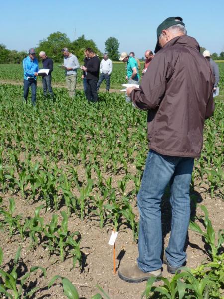 Visite parcelle essai désherbage maïs SC2