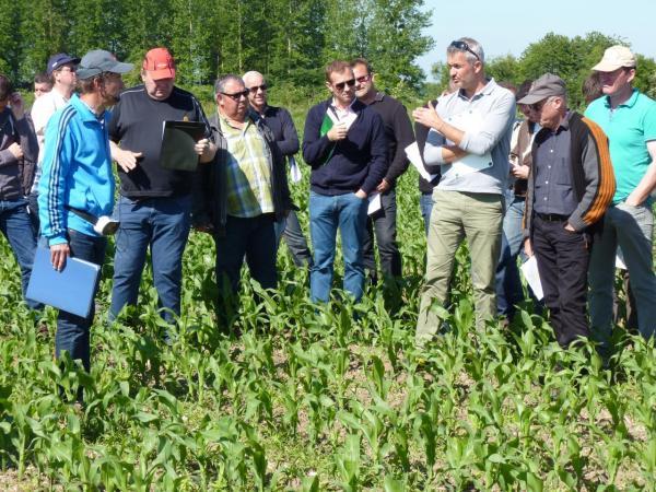 Visite parcelles désherbage maïs Benoit Bon SC2